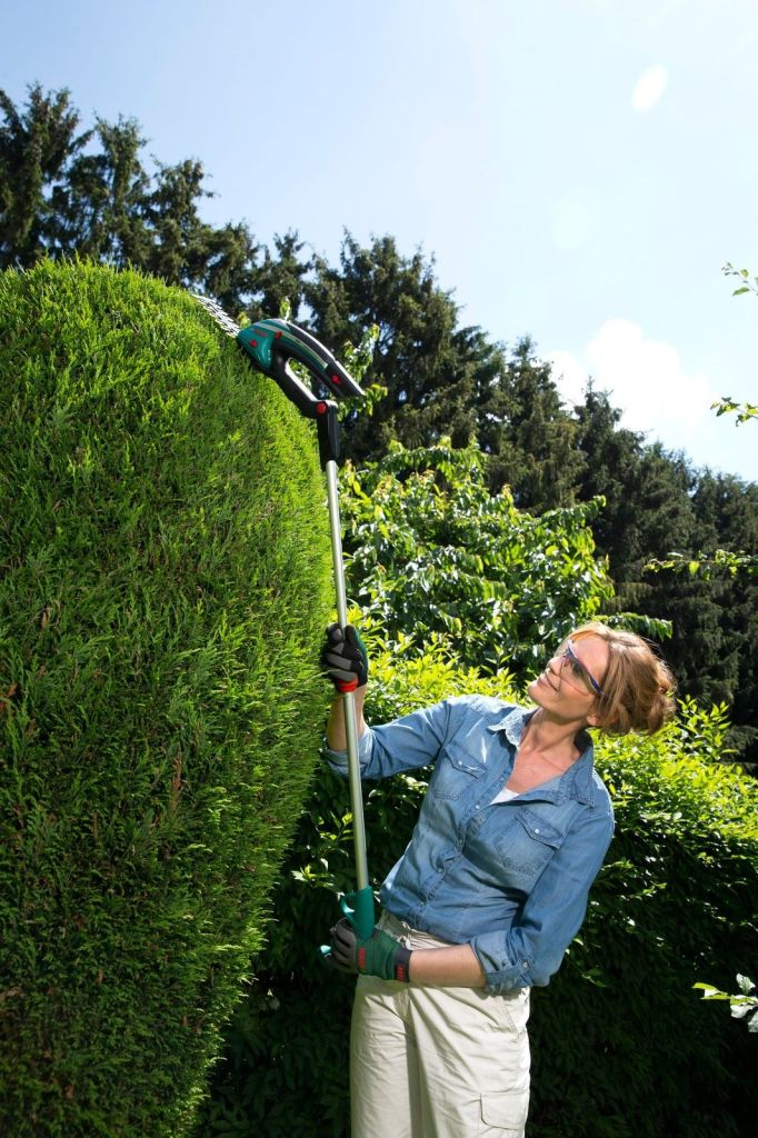 Bosch Isio Cordless Shrub/Grass Shear With Extension