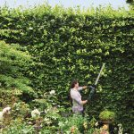Bosch AHS 65-34 Electric Hedge Trimmer Review