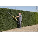 Powerplus 2 in 1 Telescopic Hedge Trimmer Review