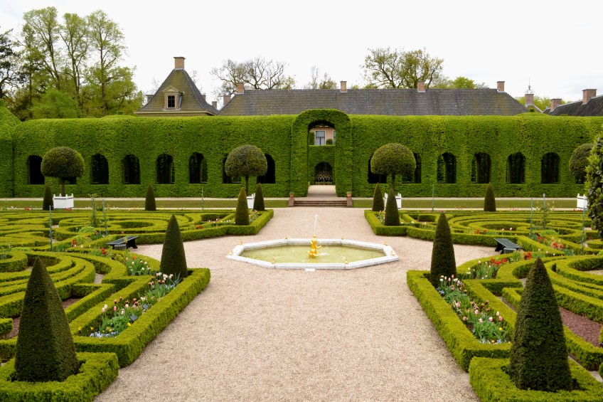 Garden with High Hedges
