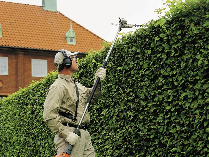 Trimming High Hedge with Telescopic Hedge Trimmer