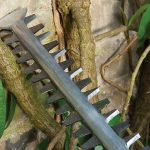 Hedge Trimmer Blades: Care and Sharpening