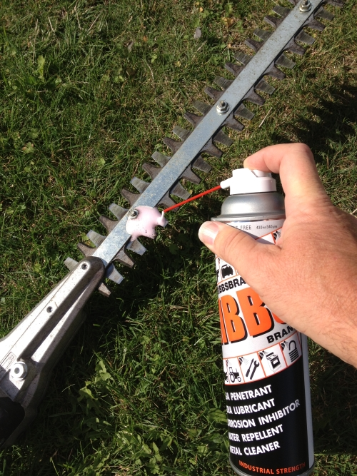 Lubricate Hedge Trimmer Blades With Spray