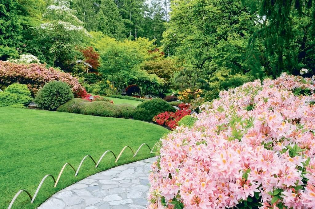 How to Prepare Your Hedges For the Spring
