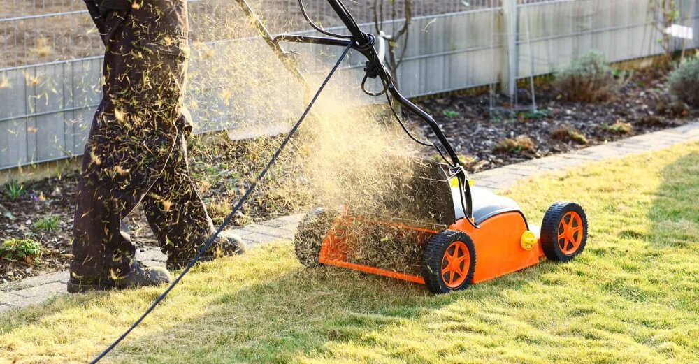 Best Lawn Scarifiers And Aerators Reviews