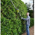 Ryobi ONE+ 18V OPT1845 Cordless Pole Hedge Trimmer Review